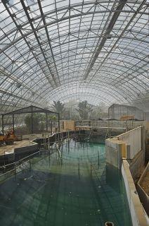 Zoo La métamorphose - © Arnaud TUDORET_446
